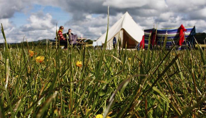 Dagmar's Photo - Old Bidlake Farm Camping Bridport